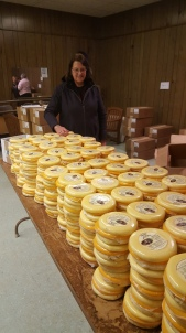 kiwanis cheese project 5